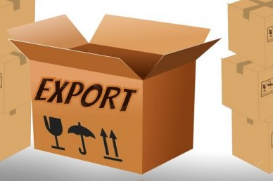 Export prospects of Kazakhstan: Cyanide - to Russia, cars - to Kyrgyzstan